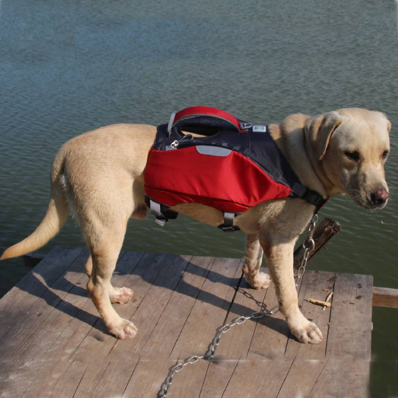 Pet Life Jacket Safety Vest Comfortable Dog Surfing Swimsuit Clothing for Dog Outdoor Sports Backpack With Zipper Pockets