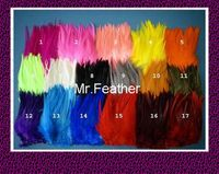 EMS Free Shipping 1kgs each color Rooster Hackle Feather Strung 12 15cm 5 6 rooster feather Trimming Rolls DIY accessory