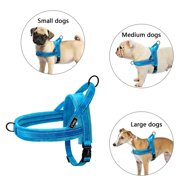 No Pull Nylon Dog Harness (Large & Small Dogs)