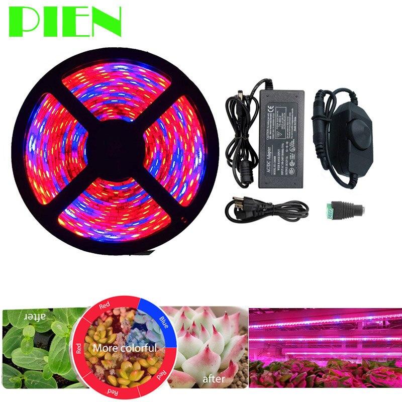 Luces de cultivo de plantas de espectro completo tira LED flor Fito lámpara 5 M regulable rojo azul 4:1 para invernadero hidropónico + adaptador de corriente