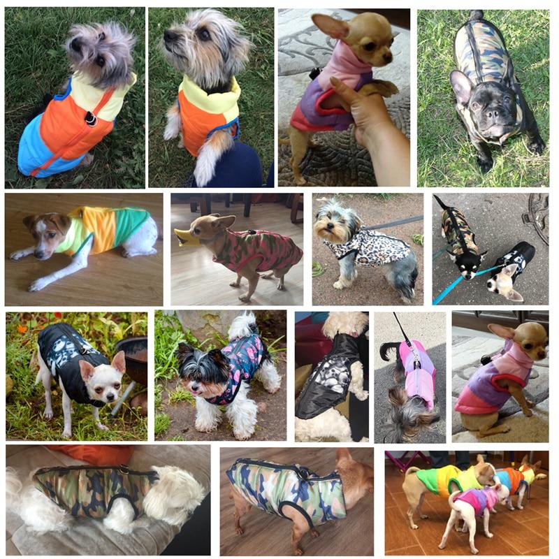 Topla pasja oblačila za male pse, odporna proti vetru, zimski hišni - Izdelki za hišne ljubljenčke - Fotografija 5