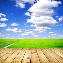 SHENGYONGBAO виниловые пользовательские деревянные зерна тема фотографии фонов Опора цифровой Фон TMW-30209