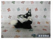 small simulation fox toy Polyethylene&fur small gray fox doll gift about 13x7x9cm