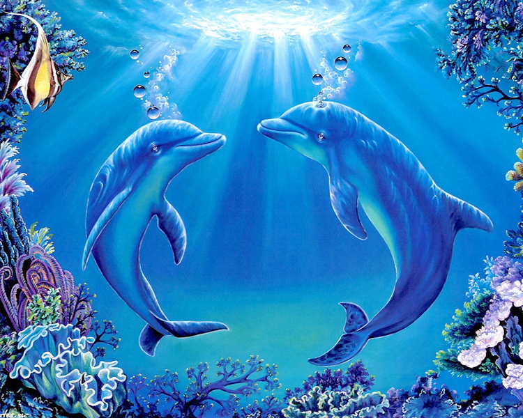 Dekorasi Menjahit Dophin Alat