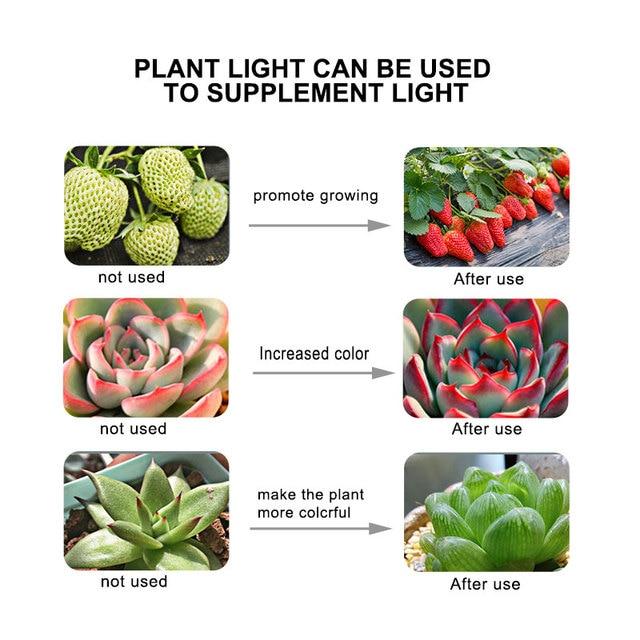 Full Spectrum E27 220V LED Plant Grow Light Bulb 5