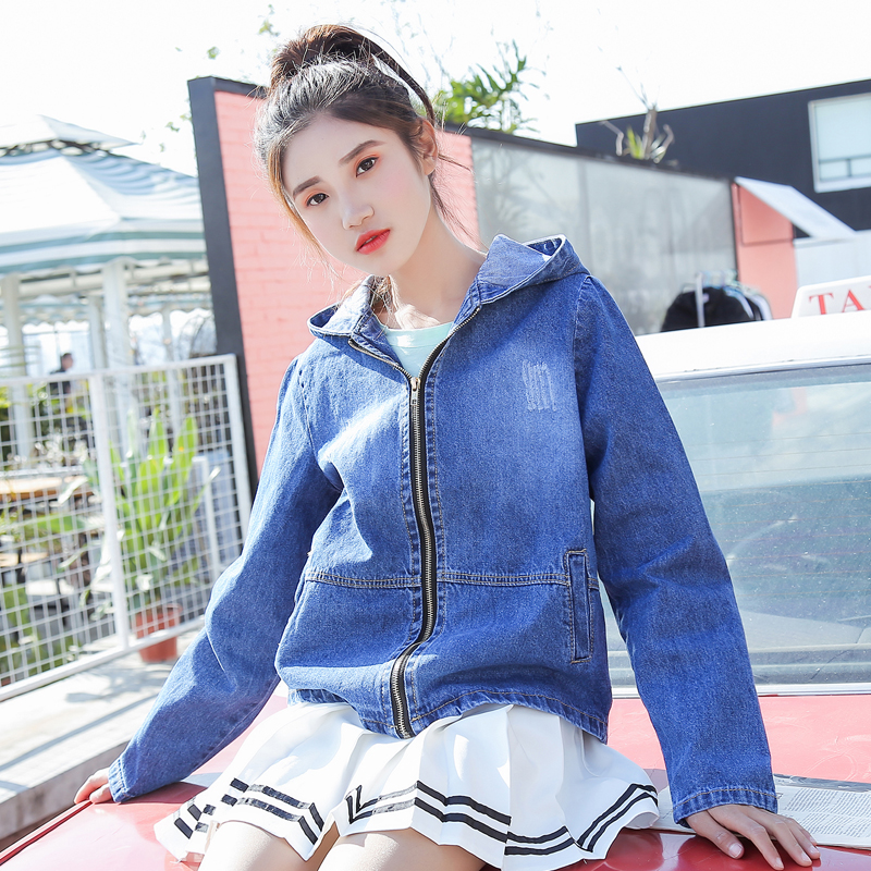 0b4a132dbe02e 2018 Spring Autumn Denim Jacket Women Embroidered Plus Size Bomber Jacket  Hooded Jeans Jacket Women Basic Coats-in Basic Jackets from Women s  Clothing ...