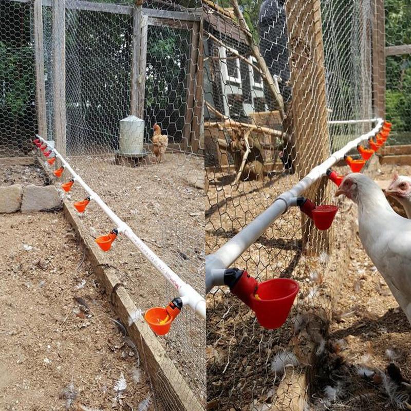 50 pièces rouge automatique boire tasses poulet abreuvoir caille mamelon buveur fil buveur eau bol date-in Cages et accessoires from Maison & Animalerie    1