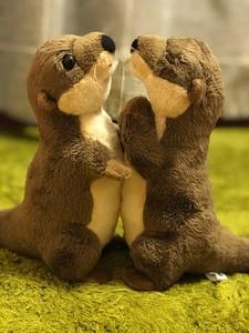 """Image 3 - 18 ס""""מ עומד נהר וטרה חיים אמיתיים גודל וטרה חיות פרווה צעצועים צעצועים בפלאש מיני למתנות יום הולדת לילדים"""