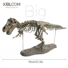 Big dinosaur 4D assembled bone blast dragon children's toy tyrannosaurus fossil skeleton simulation animal teaching model decor