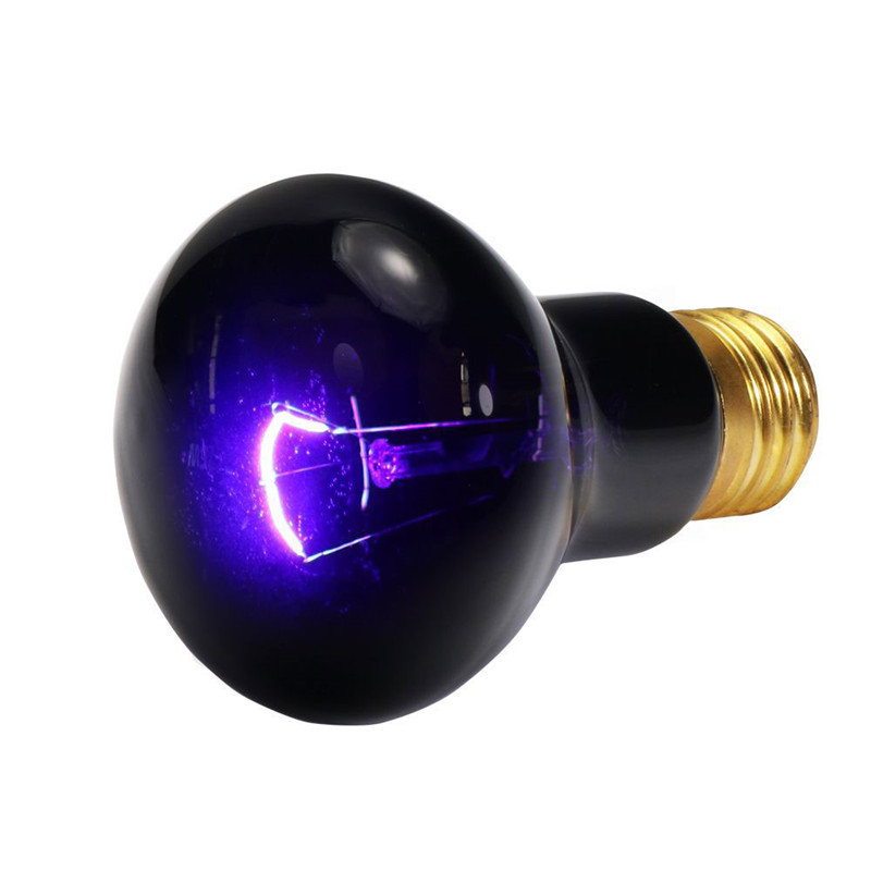 Aliexpress Com Buy Reptile Night Heating Lamp Bulb