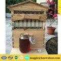 Venda da fábrica de mel colmeia de abelhas de fluxo automático/out fluindo colmeia da abelha do mel