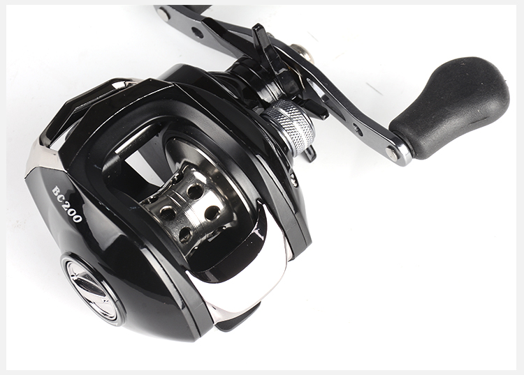 Lizard discount 5 Reel 7