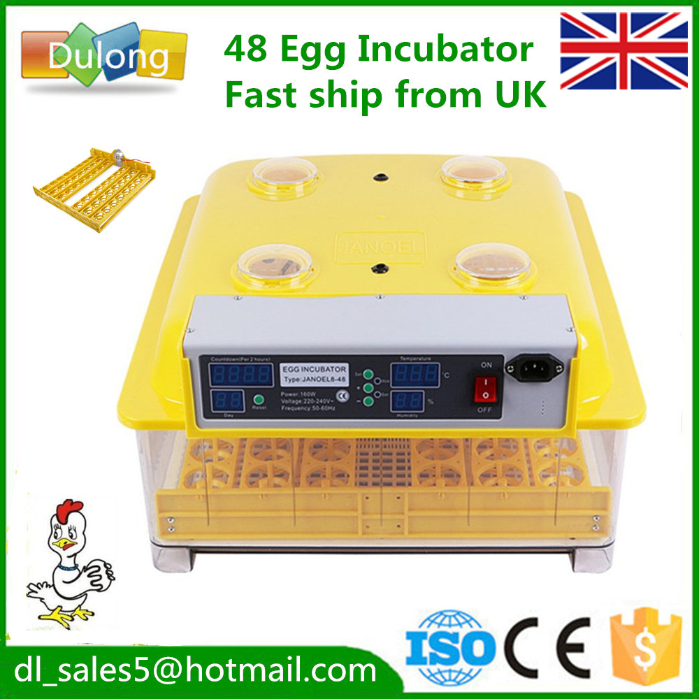Chicken egg incubator hatchery quail brooder eggs ducks birds Cheap hatching   machine free ship to au new sale home automatic egg incubator 56 eggs chicken incubator brooder quail eggs incubators