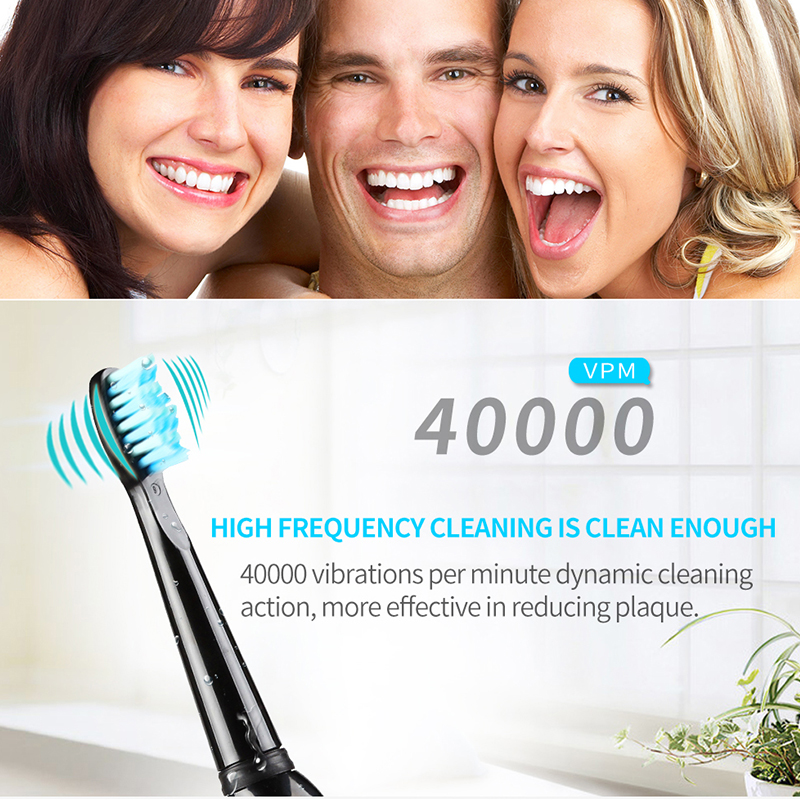 Image 4 - Seago Electric Toothbrush Sonic waterproof Portable USB Rechargeable Travel Brush Adult Electric Teeth White High Quality SG515-in Electric Toothbrushes from Home Appliances