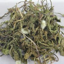 1kg Dandelion Tea 100% Wild Natural Chinese Medicine Herbs Health Care Detox Buck Dried Herbal Tea 7009-30