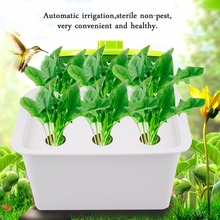 New 6 Holes 110V Plant Site Hydroponic System Indoor Garden Cabinet Box Grow Kit Bubble Garden Pots Planters Nursery Pots