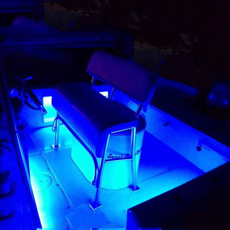 4x Marine Grade 12 volt Large Waterproof Cool Blue LED Courtesy Lights