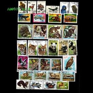 Image 3 - 200 ADET HIÇBIR Repetiton Konu Vahşi Hayvan Kullanılmayan Posta Pulları, posta pulları Sonrası Işareti Koleksiyonu 200