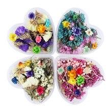 1 kutu Nail 3D dekorasyon DIY karışık kurutulmuş çiçekler güzel beş yaprakları çiçek tırnak çıkartmalar tırnak sanat dekorasyon güzellik