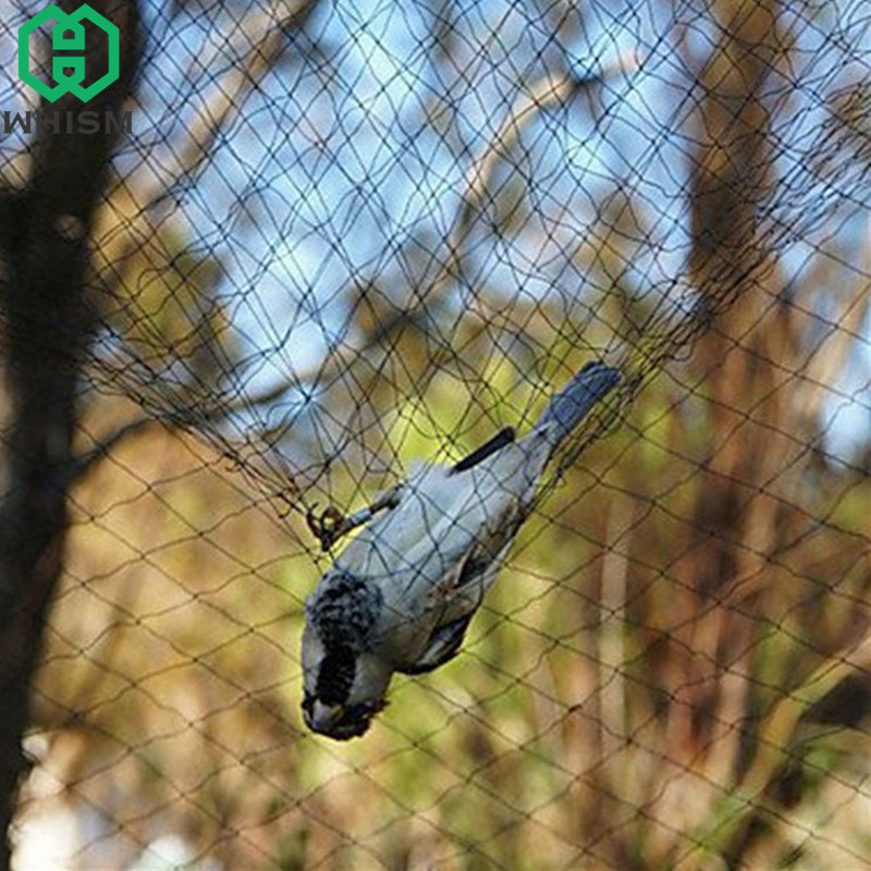 WHISM Garden Plants Protective Nets Anti Bird Netting Fly Trap Pond Net Protect Tree Crops Fruit Screen Garden Mesh Pest Control