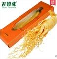 Новый Вакуумной Упаковке Большой Panax Корень Женьшеня 120 г Высший Сорт Свежего Корня Женьшеня 8 Лет Оптовые Травяной чай