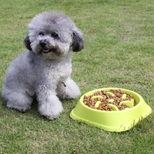 slow feeder dog bowl PP material