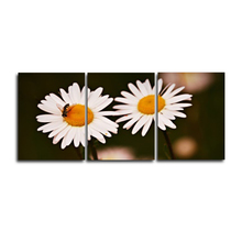 Laeacco 3 Panel Garden Posters and Prints White Flower Daisy Pictures Wall Artwork Home Living Room Decoration Canvas Paintings