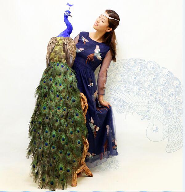 Vraie vie jouet oiseau grand 150 cm belles plumes paon modèle artisanat maison jardin décoration fête activité accessoires jouet h0996