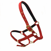 Outdoor Headstall Horse Riding Racing Woven Belts Bridle Adjustable Size M/L Halter Horsing Outdoor Tools Equipment Paardensport