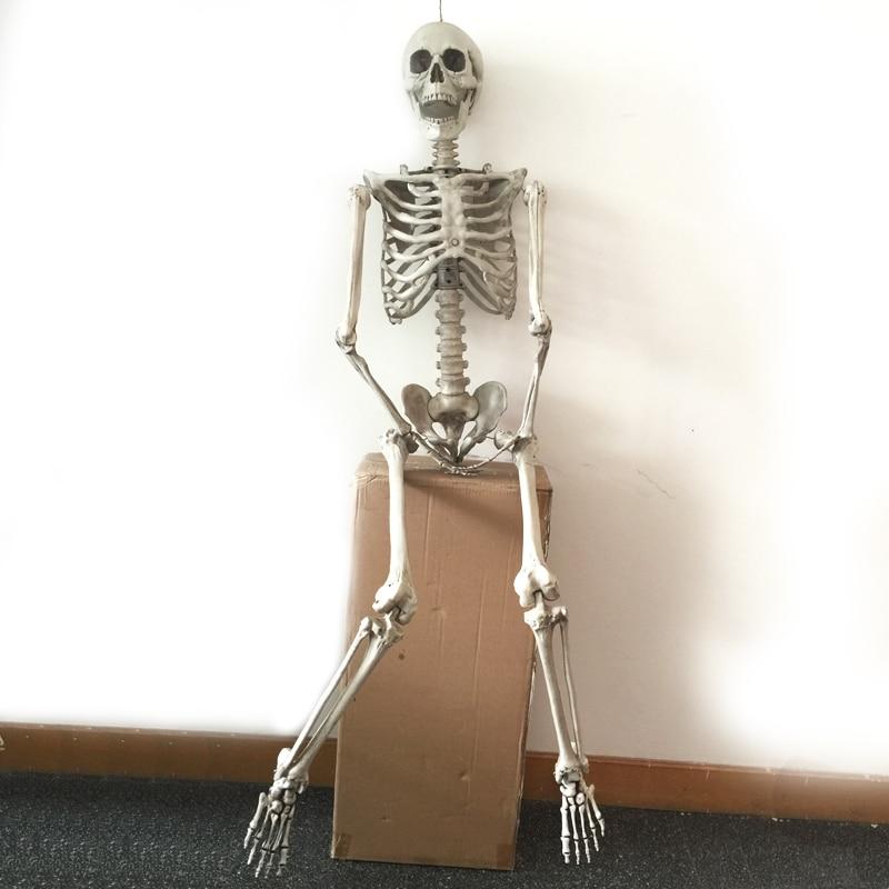165cm Pose N Aufenthalt Skelett Halloween Dekoration Kunststoff - Partyartikel und Dekoration