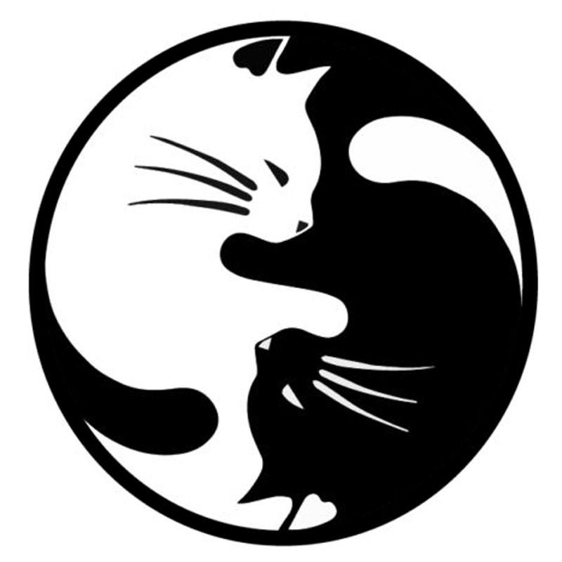 Cat Car Sticker