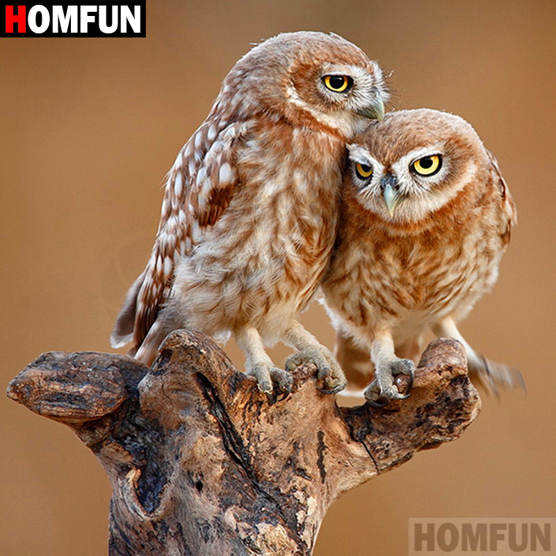 "HOMFUN Full Square/Round Drill 5D DIY Diamond Painting ""Animal owl"" 3D Embroidery Cross Stitch 5D Home Decor A07601"