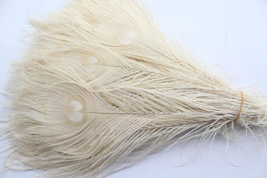 50 PCS/natural White Peacock Feathers In The Eye, 10 To 12 Inches Of The Peacock Feather  Free Shipping Wedding Decoration