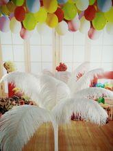 무료 배송 도매 50pcs 아름다운 자연 흰색 타조 깃털 14 16 inch/35 40 cm 장식 diy