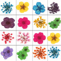 Nail Art 3D Decoration 12 Different Dried Flowers Nail Glitter UV Gel Acrylic Nail Tips Tool Free Shipping