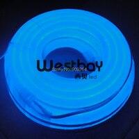 Blue Color Mini Led Neon Flex In DC12V 10Meters Per Lot Neon Flex Light Rope For