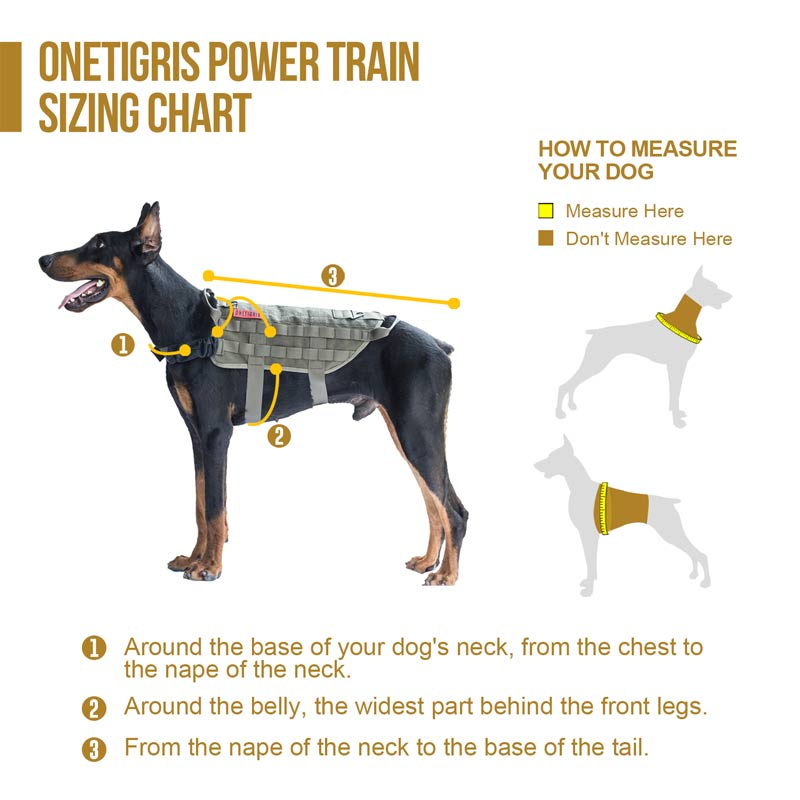 Harness Training Dog Tactical 2