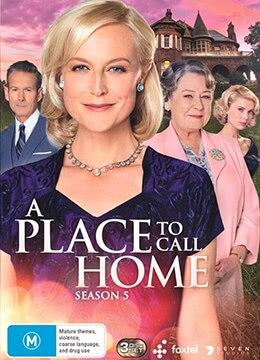 《家的港湾 第五季》2017年澳大利亚电视剧在线观看