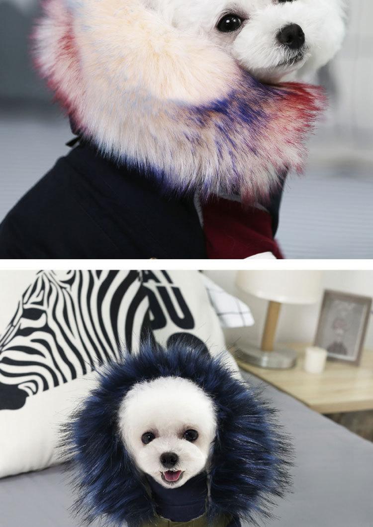 Luxury Dog Clothes (6)
