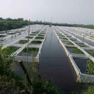 100 сетка уплотненный PE сеть аквакультуры чехол Омаров Краб монопод Albus сеть для разведения доступна Кастомизация размера