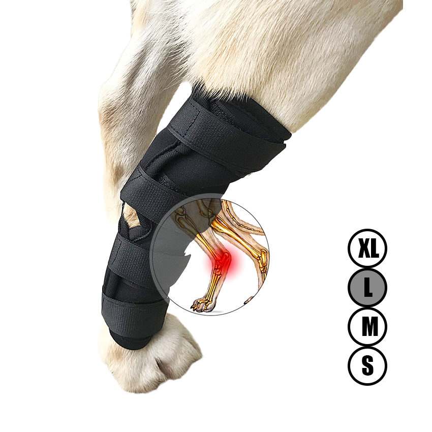 Dog Canine Rear Leg Knee Brace Hock Joint Wrap For Heals And Prevents Injuries And Sprains Helps With Loss Of Stability (S-XL)