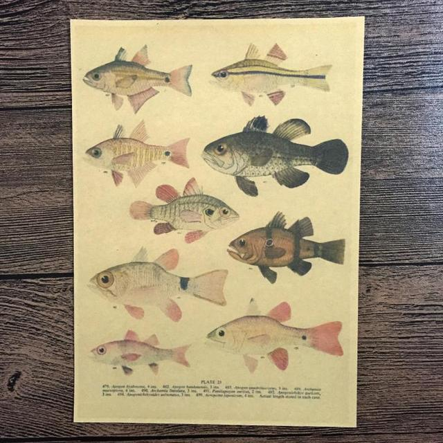 Free ship kind fish Retro Poster Vintage Wall Art Crafts Paper ...
