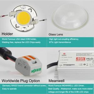 Image 4 - Lampe de croissance COB 100, 200/LED W, CREE CXB3590, 26 000lm = HPS 400W, éclairage à spectre complet pour tente/culture hydroponique intérieure de plantes