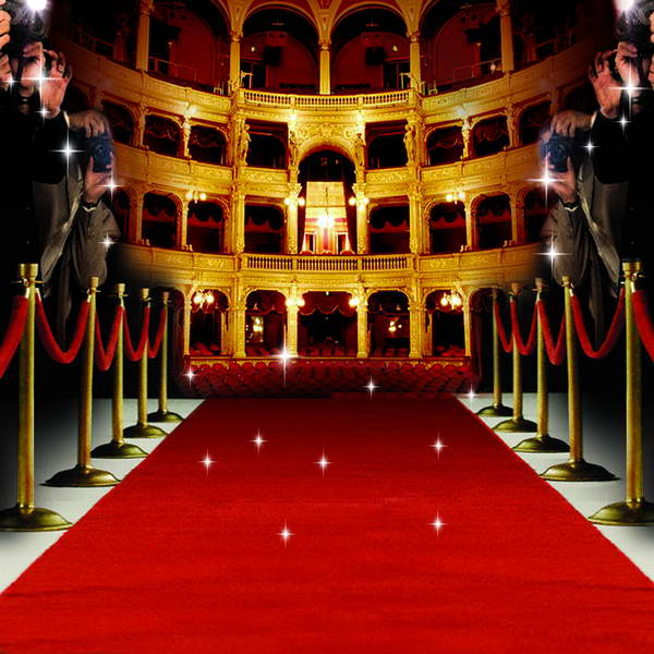 Hollywood Theme Red Carpet Paparazzi celebrity backdrop Vinyl cloth High quality Compute ...
