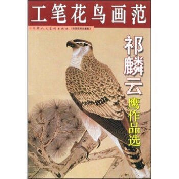 China Eagle HAWK Chinese Painting Sketch Book