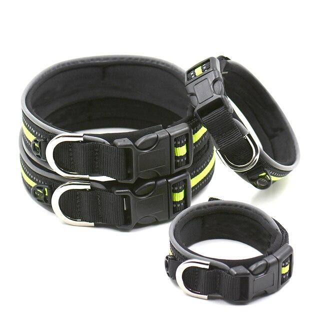 padded dog collars