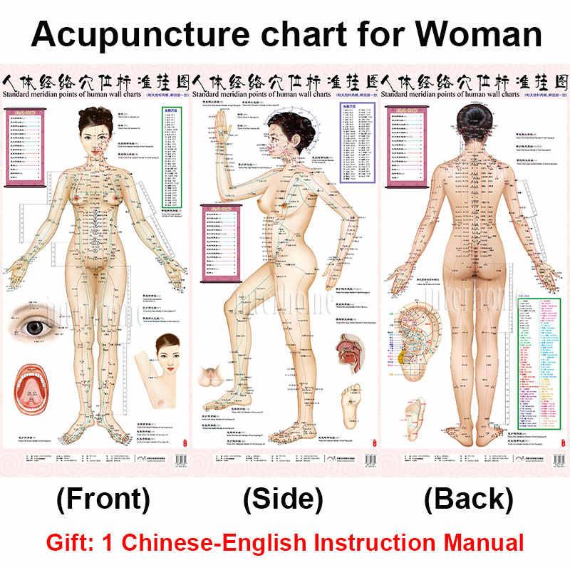 Detail feedback questions about standard meridian acupuncture points