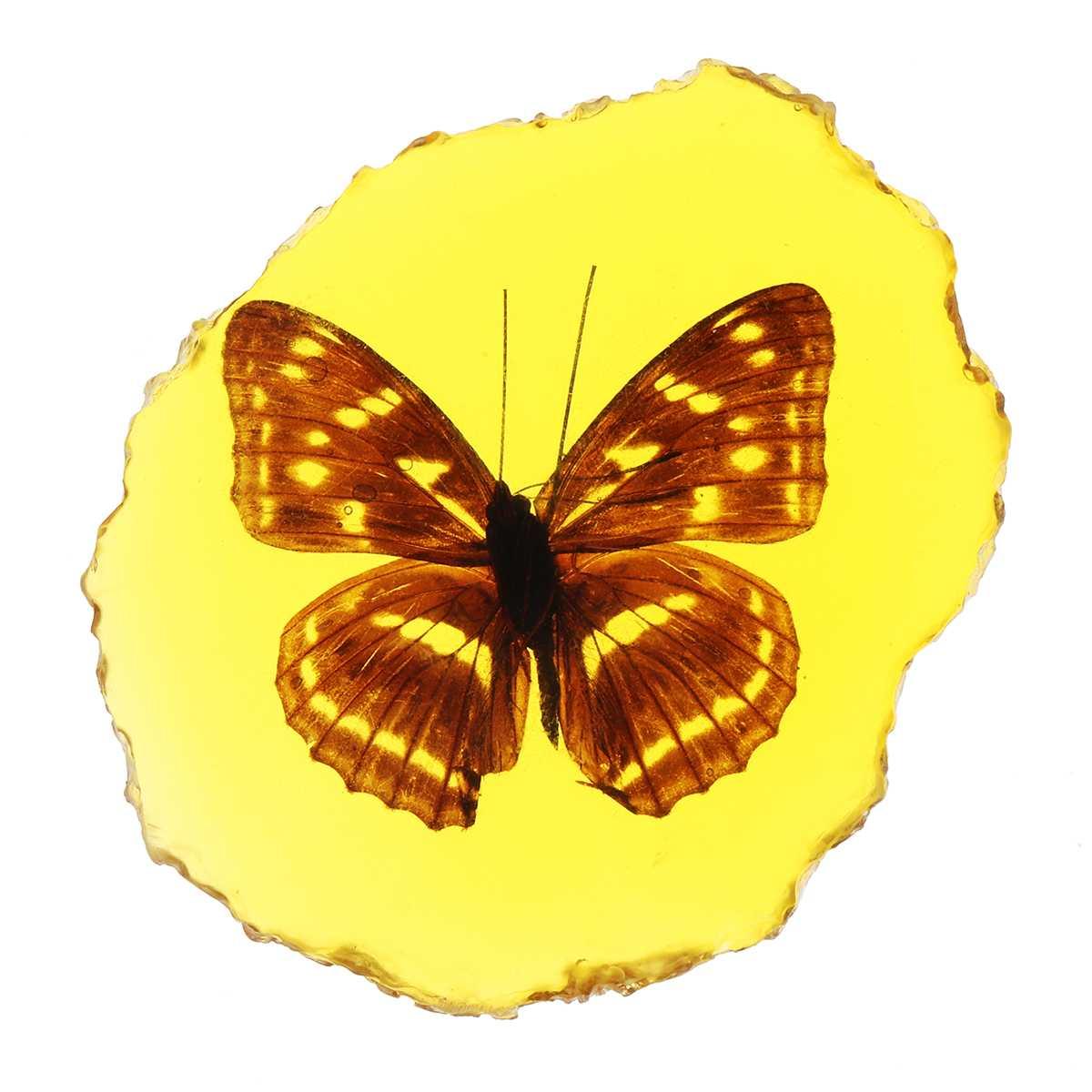 Натуральный Янтарный Стрекоза Скорпион бабочка геккон насекомое ручной полировки украшения DIY Орнамент Ремесло подарок для дома - Цвет: Butterfly