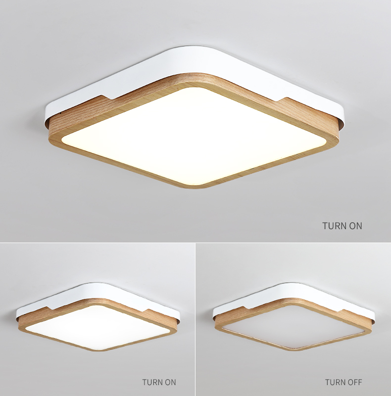 Ceiling-Light_06