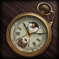 ROMAN NUMBER DIAL WIND UP MECHANICAL POCKET WATCH VINTAGE TOURBILLON MOONPHASE COPPER TONE H035